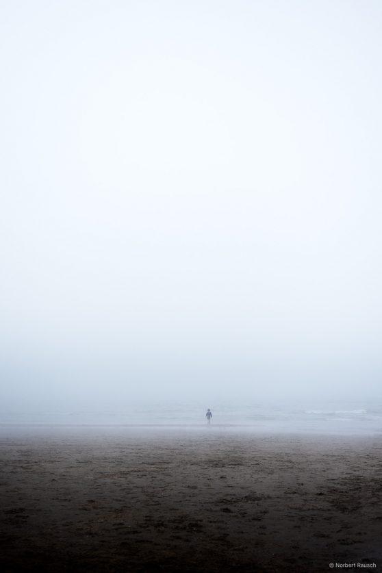Beach.Boy